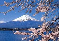 รับทำวีซ่าญี่ปุ่น